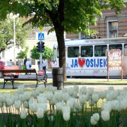 osijek, accommodation, croatia, holiday, apartments
